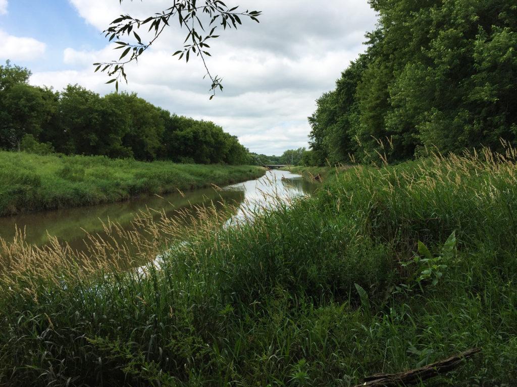 Turtle Creek River Bank
